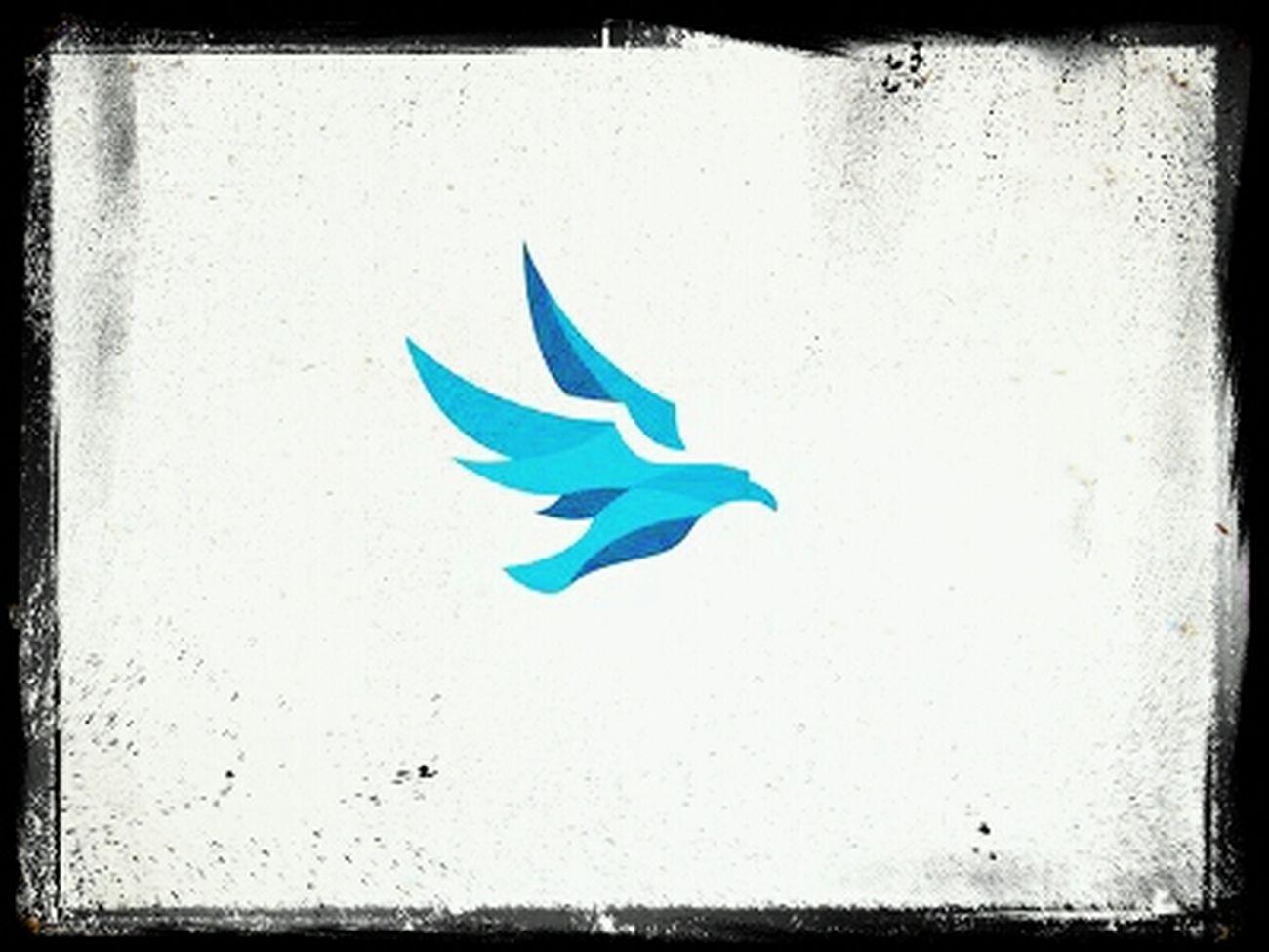 Logo Logos Logo Logo Design