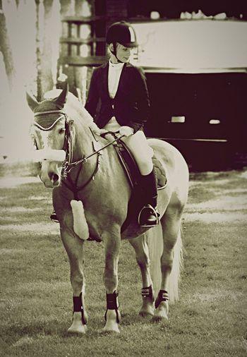 Eeyem Photography Onlylove Horse Lifestyle Mychampion Haflinger