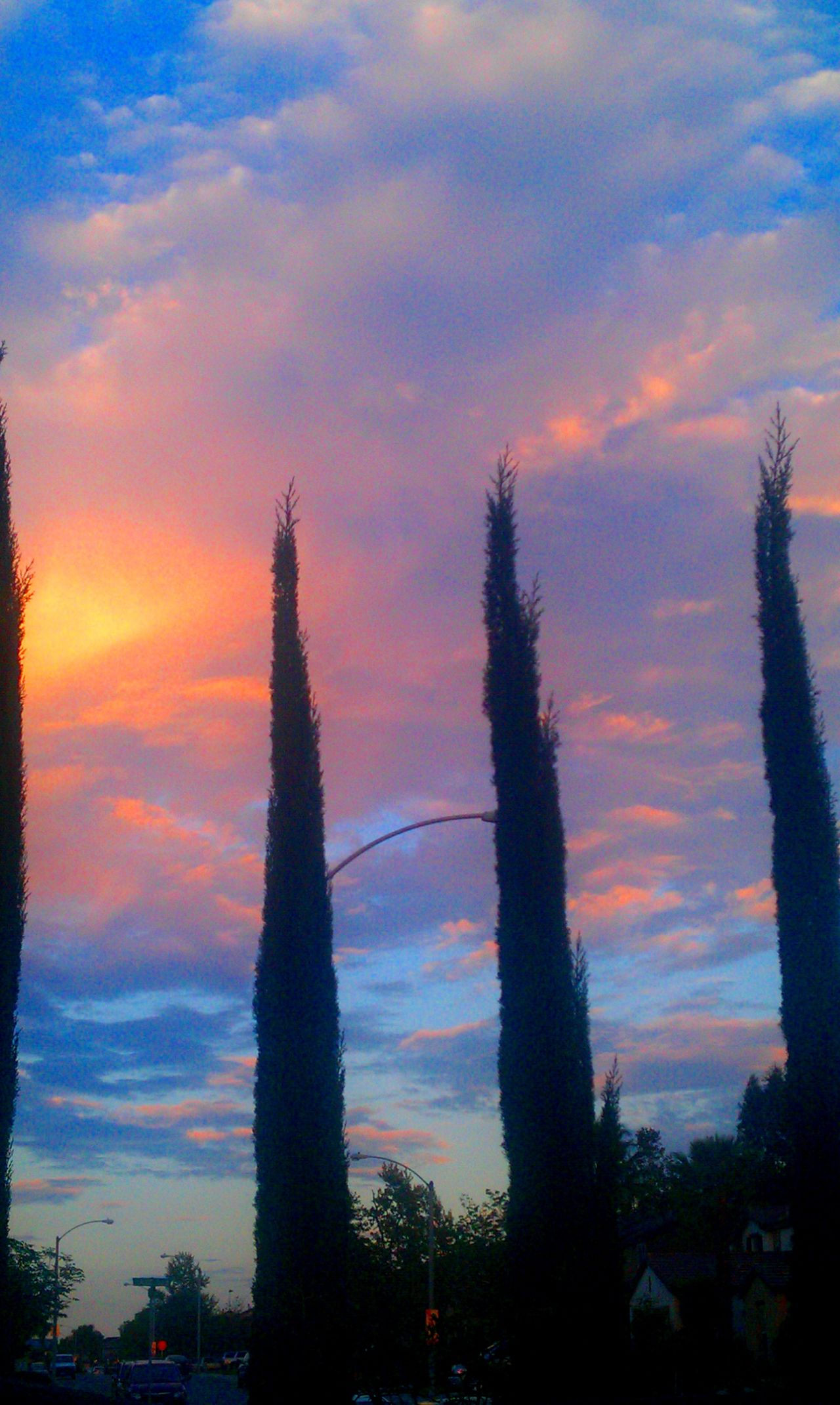 Taking Photos Sky And Clouds Trees Clouds Sky Purple Sky Pink Sky Red Sky Blue Color Blue Sky Outdoors Home Is Where The Art Is Color Photography Beautiful Day Riverside California Colour Of Life No People, Sunset Ice Age