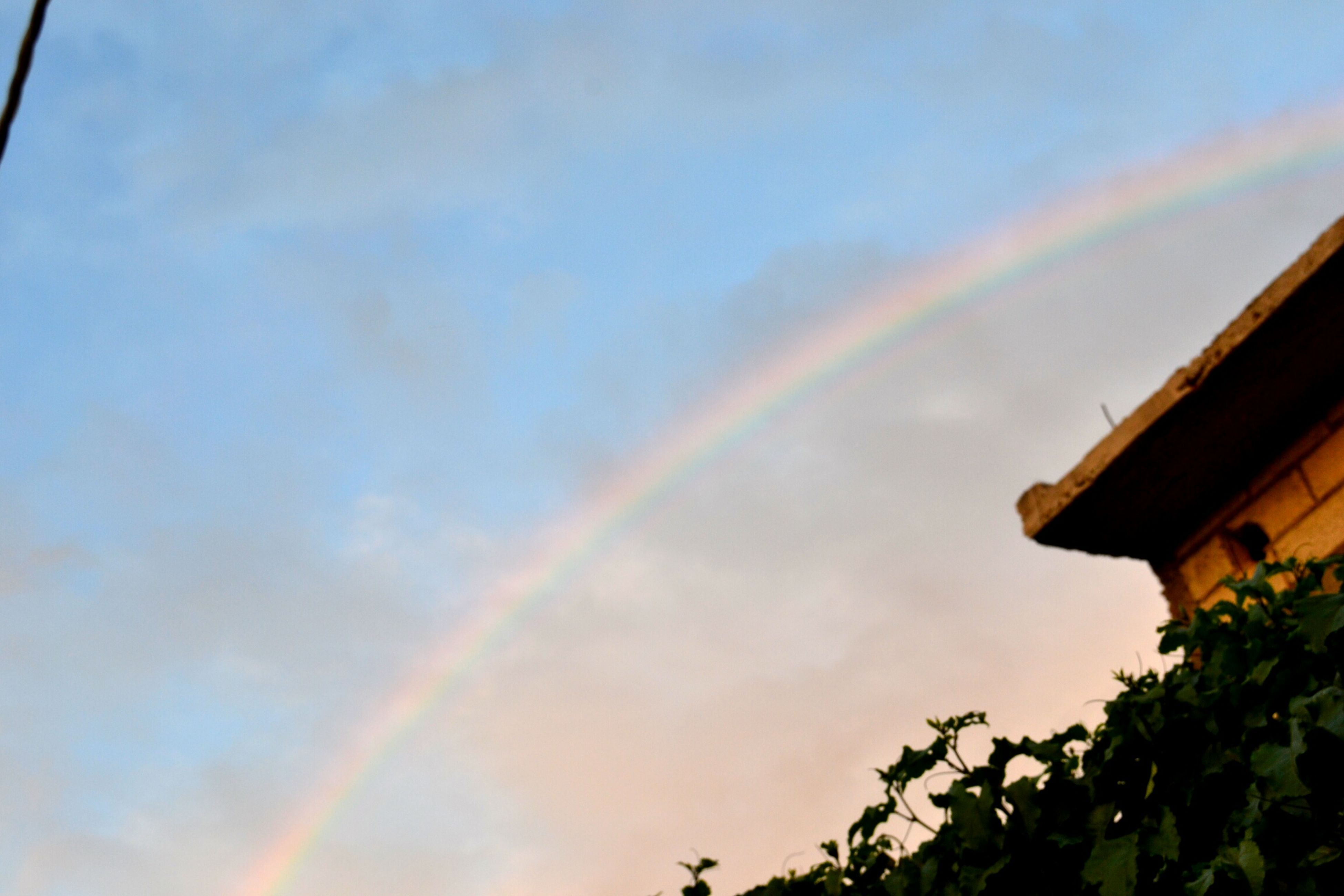 rainbow, low angle view, sky, tree, multi colored, cloud - sky, built structure, architecture, building exterior, beauty in nature, nature, cloud, growth, scenics, high section, sunset, outdoors, cloudy, no people, house