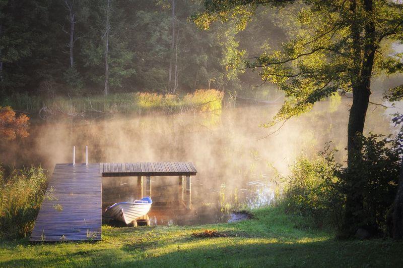 Lake Nature Poland Mazury Beauty In Nature Summer Morning Dawn