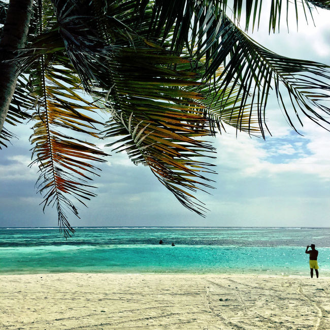 Maldives Taking Photos Of People Taking Photos Palm Trees Blue Water Indian Ocean Beachphotography Reef Crystal Clear Waters