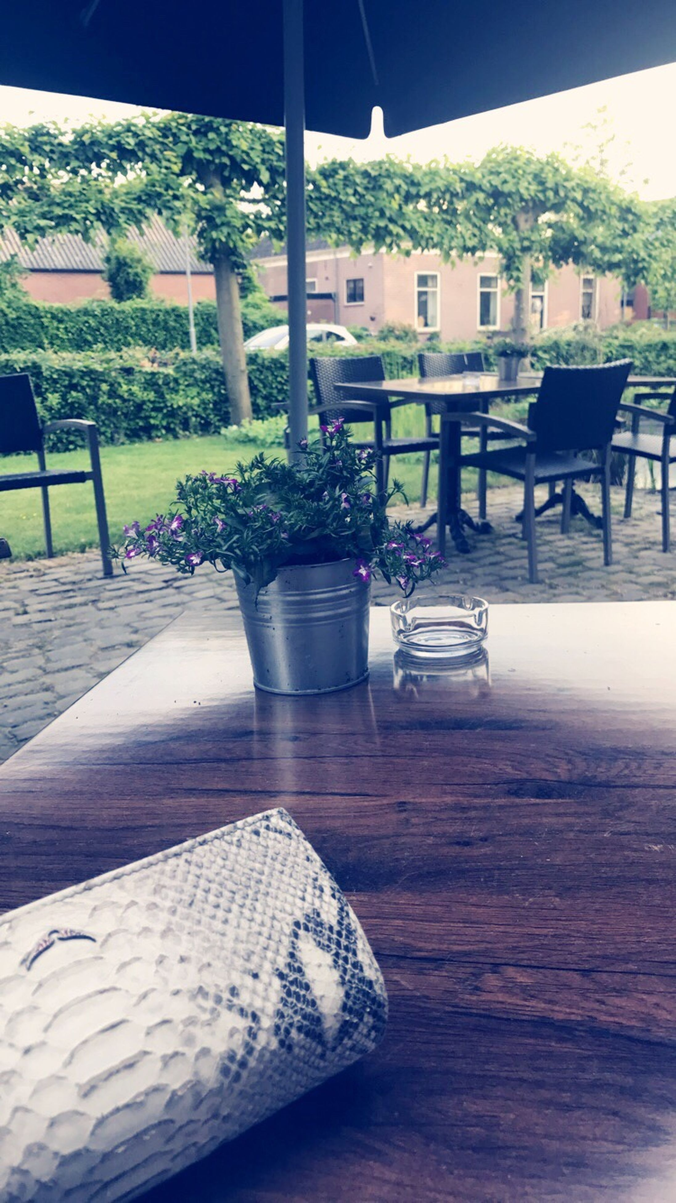 table, cafe, chair, no people, day, outdoors, food, nature, tree, close-up