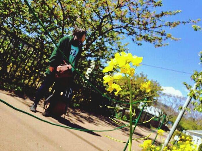 spring* 静岡県 下田 Relaxing Taking Photos That's Me
