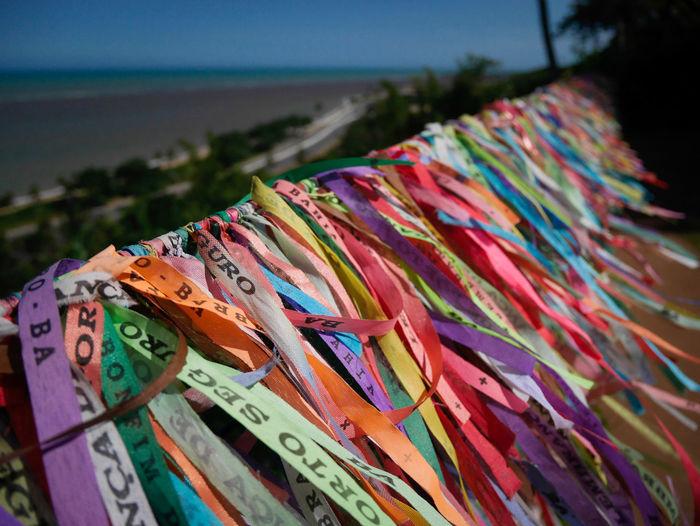 Multi Colored Close-up Outdoors No People Sea Nature Day PortoSeguroBahia/Brazil Brasil Brazil
