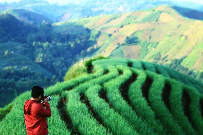 Showcase April the day has come, april green Majalengka INDONESIA