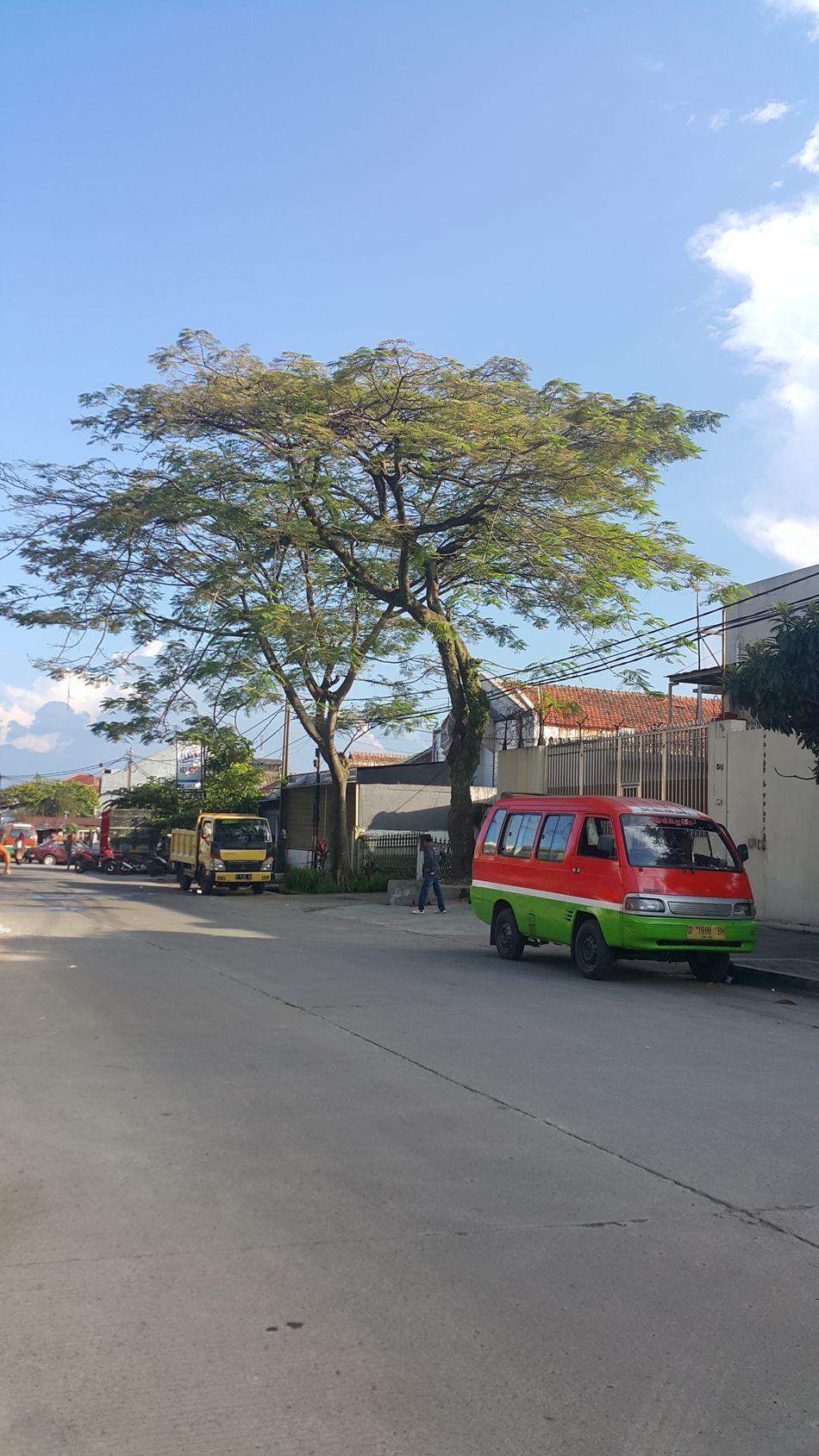 Transportation Mode Of Transport Tree Sky Nature Outdoors Angkot