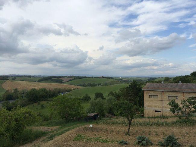 Organic Farm in Tuscany, Italy Italy Tuscany Countryside Organic Organicfarm