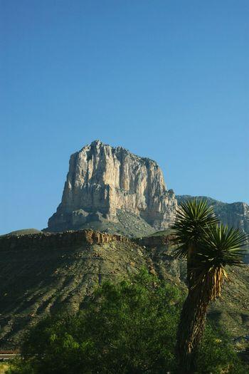 Outdoors Nature Desert Guadeloupe National Park Mountain Arid Climate Guadeloupe Peak Rocky