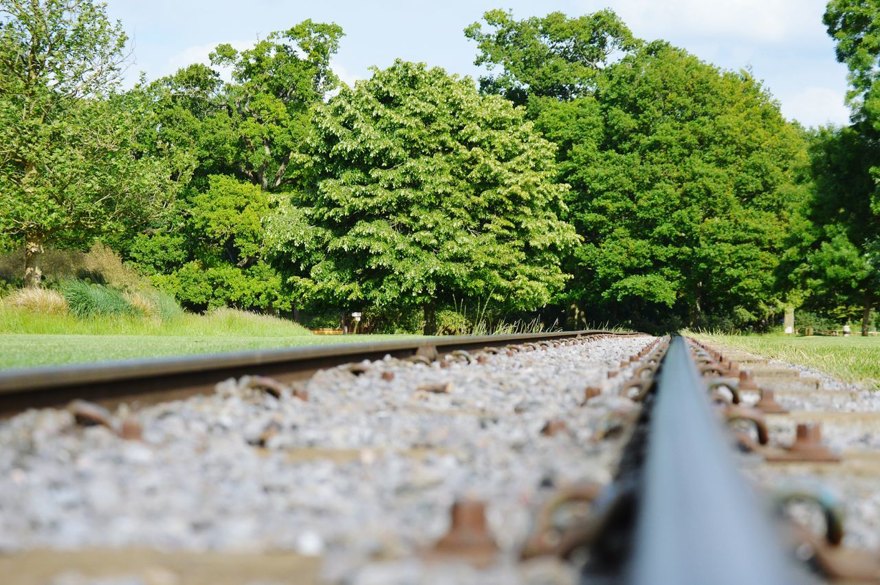 Capturing Freedom Infinity Nature Railway Trees Landscapes Peace