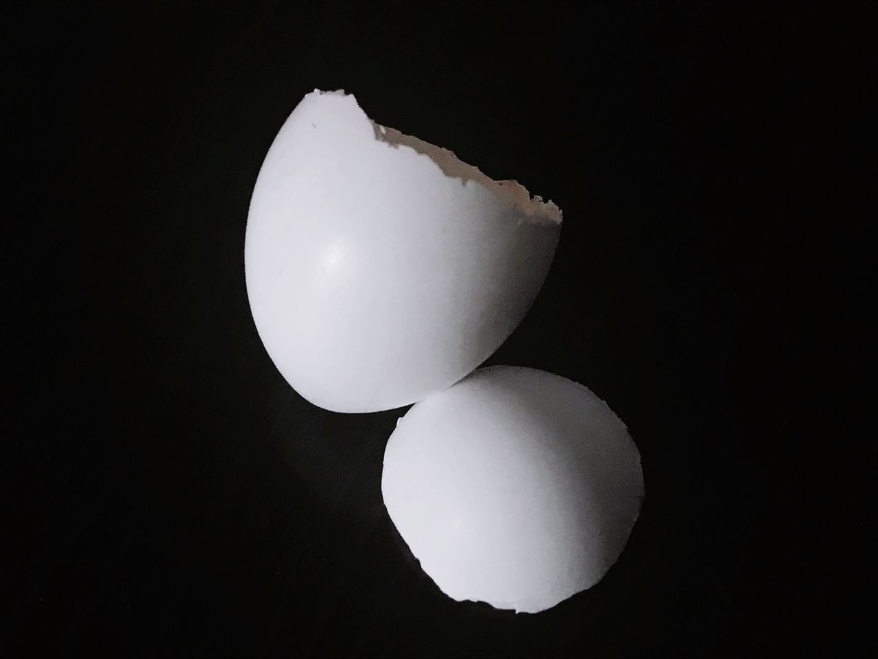 Found Object Simplicity Birds Egg Egg Shell Broken Small Black Background Fragility Close-up White Negative Space