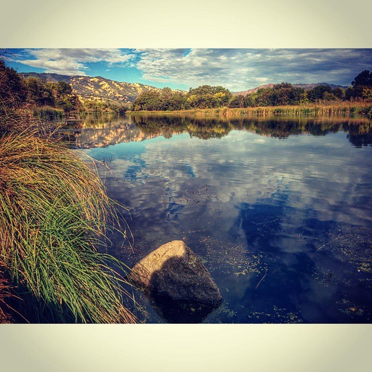 Goodmorning Putahcreek LakeSolano Wintersca Landscape Lake Water Reflection