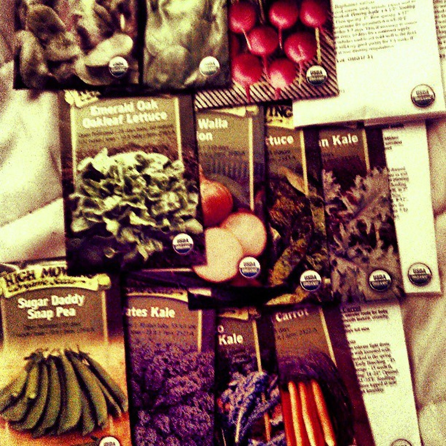 My seeds came in the mail!! Gardening Fallgarden Organic Vegetables hellaexcited