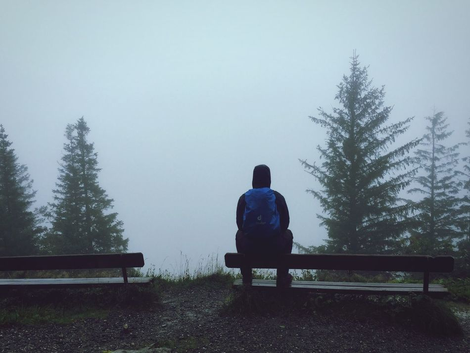 Norway Foggy Hike Benches Loneliness Hilltop Lost Peaceful Tranquility In Thought No Visibility Rear View Nature Weather Bench One Person Outdoors EyeEmNewHere EyeEmNewHere