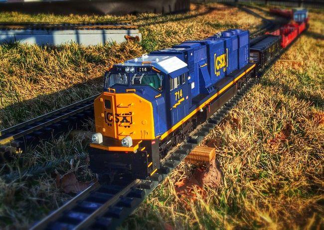 Woo woo... Model Train