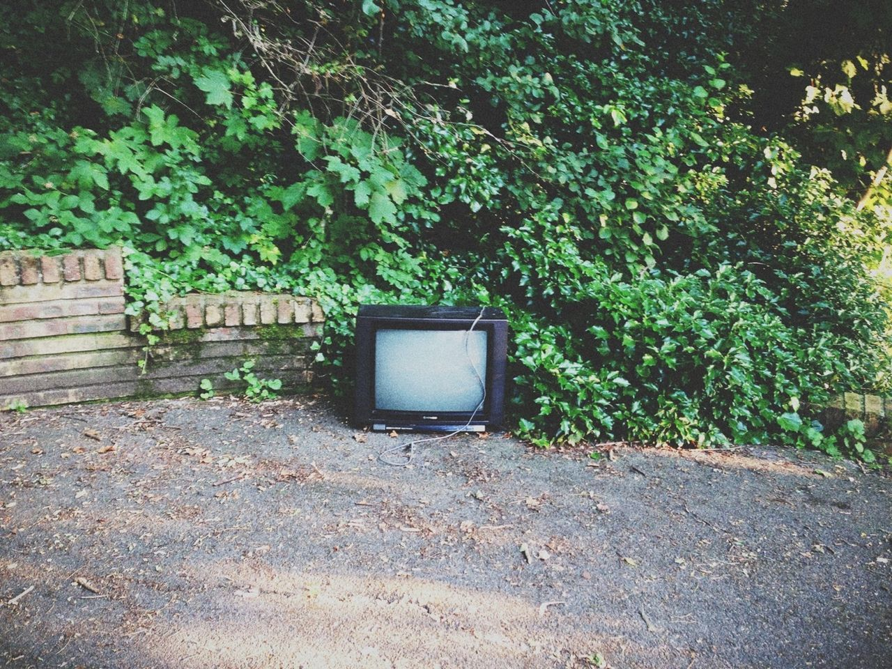 Beautiful stock photos of television, Abandoned, Arts Culture And Entertainment, Day, Discarded