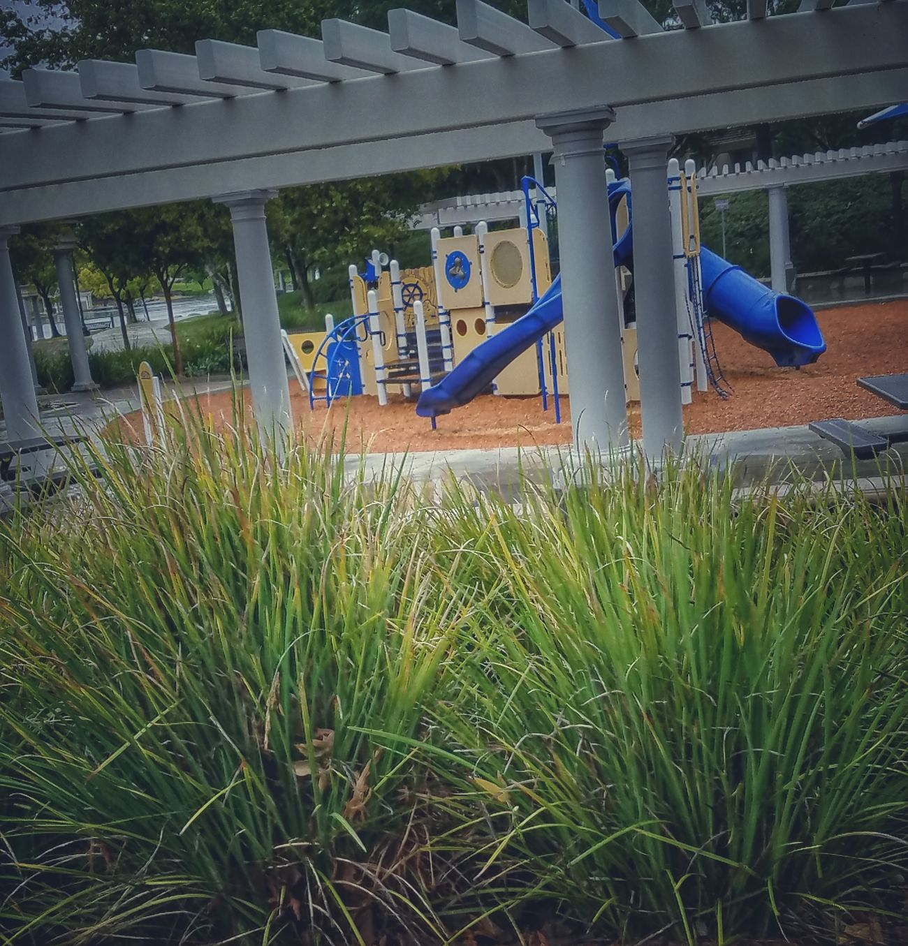 Playground Pretty Blue Grass Outdoors No Children Playing Beauty In Nature No People