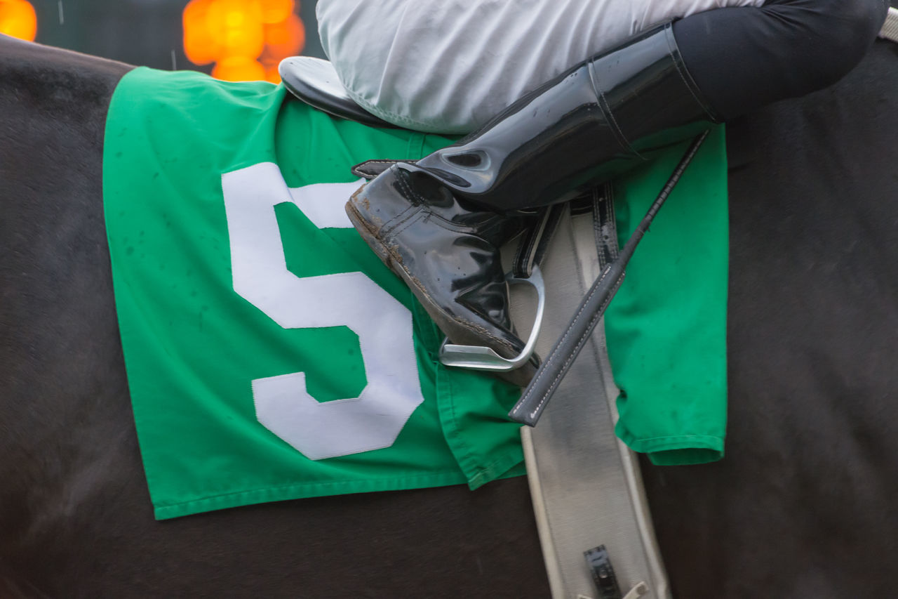 Adult Adults Only Close-up Day Green Color Horse Riding Human Body Part Human Hand Jockey Number Five Numbers One Person People Riding Boots