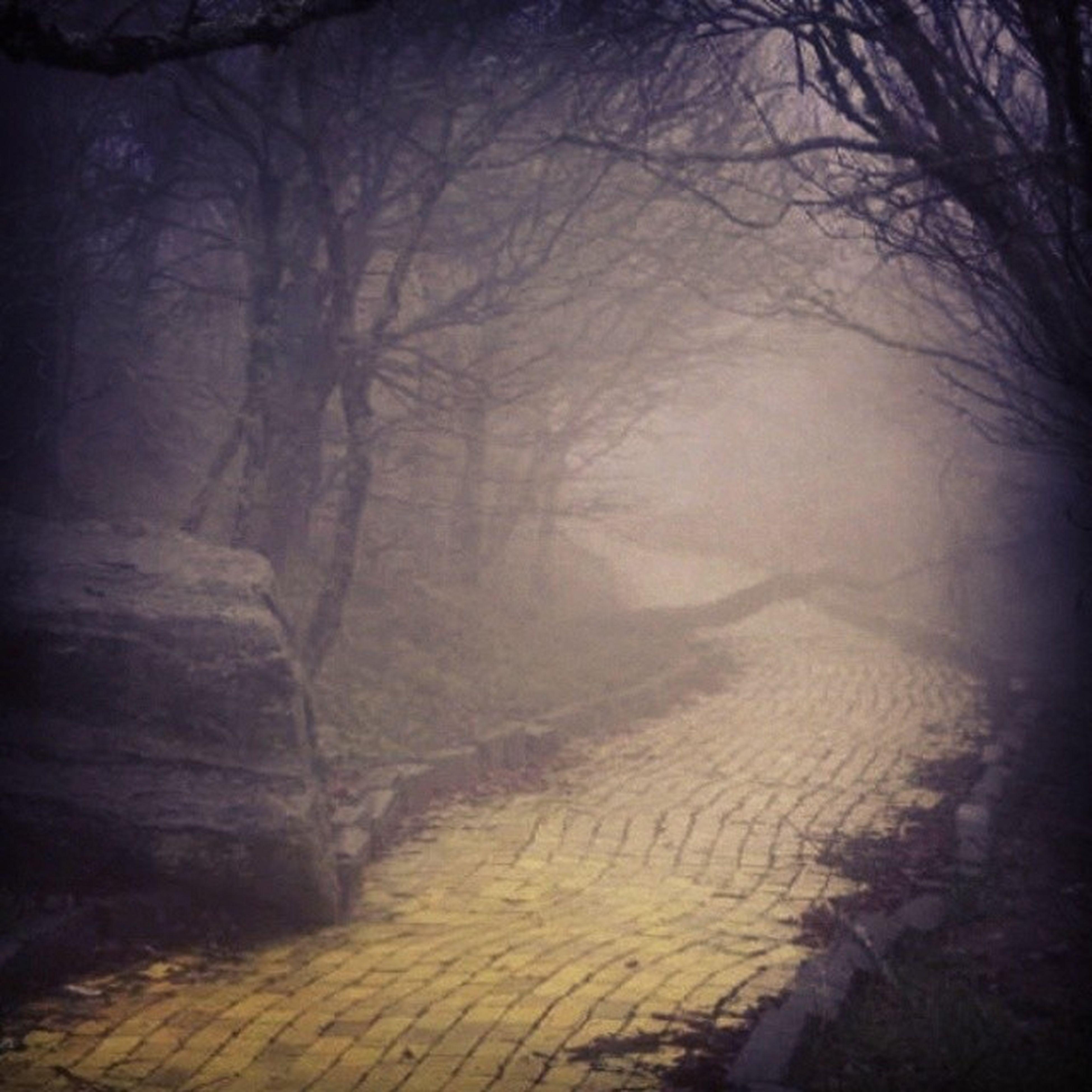 Follow this yellow brick road. :O Fuckincreepyasshit Fuckyouuuuu Dorthygotballs