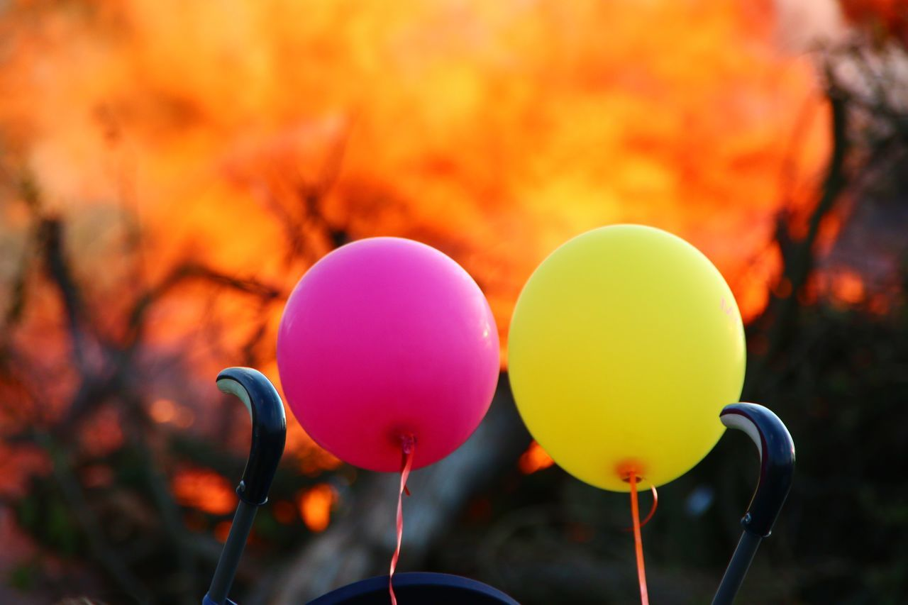 Beautiful stock photos of fire, Balloon, Day, Fire, Flame