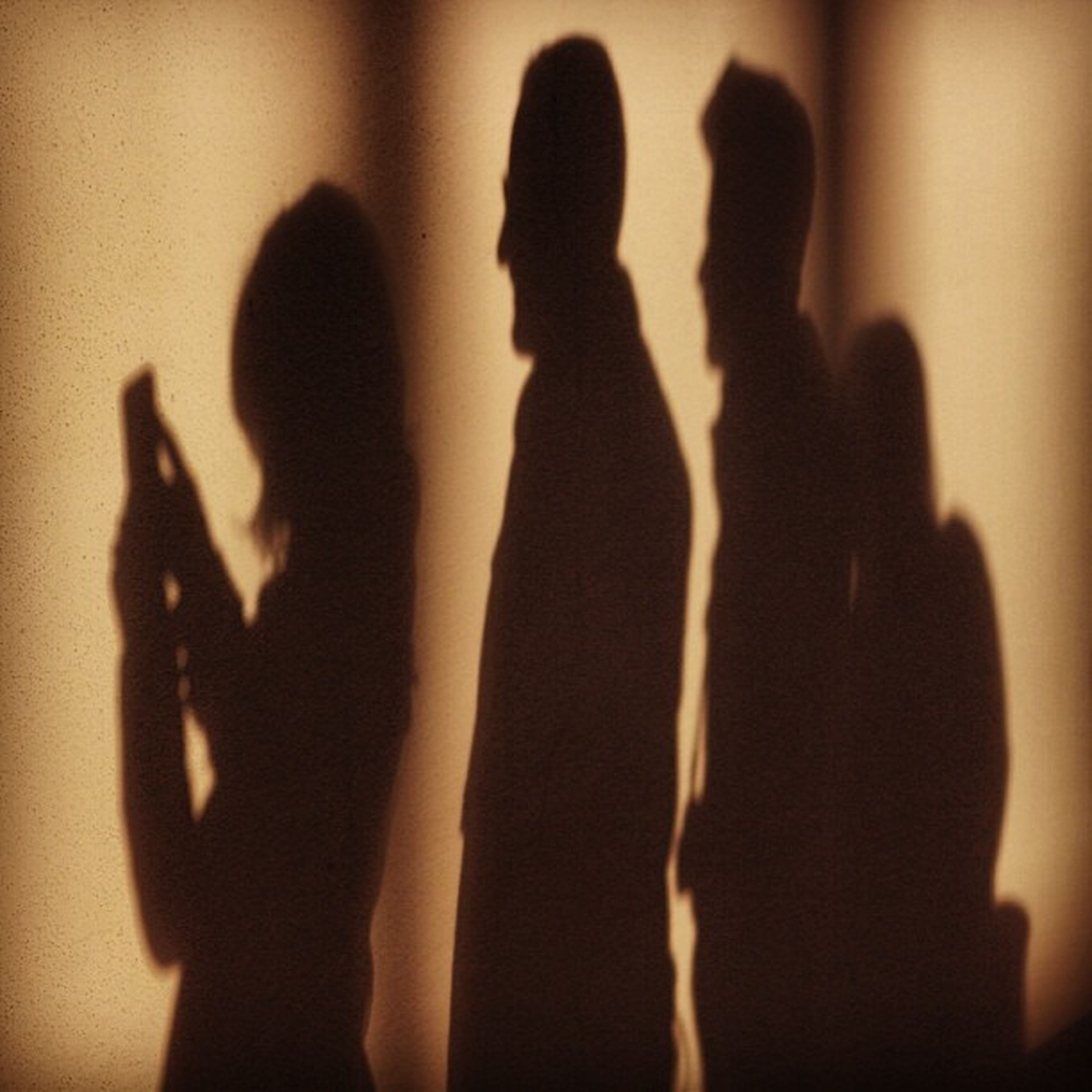 togetherness, lifestyles, indoors, leisure activity, silhouette, person, bonding, men, love, enjoyment, arts culture and entertainment, standing, music, friendship, three quarter length, arms raised, fun, shadow