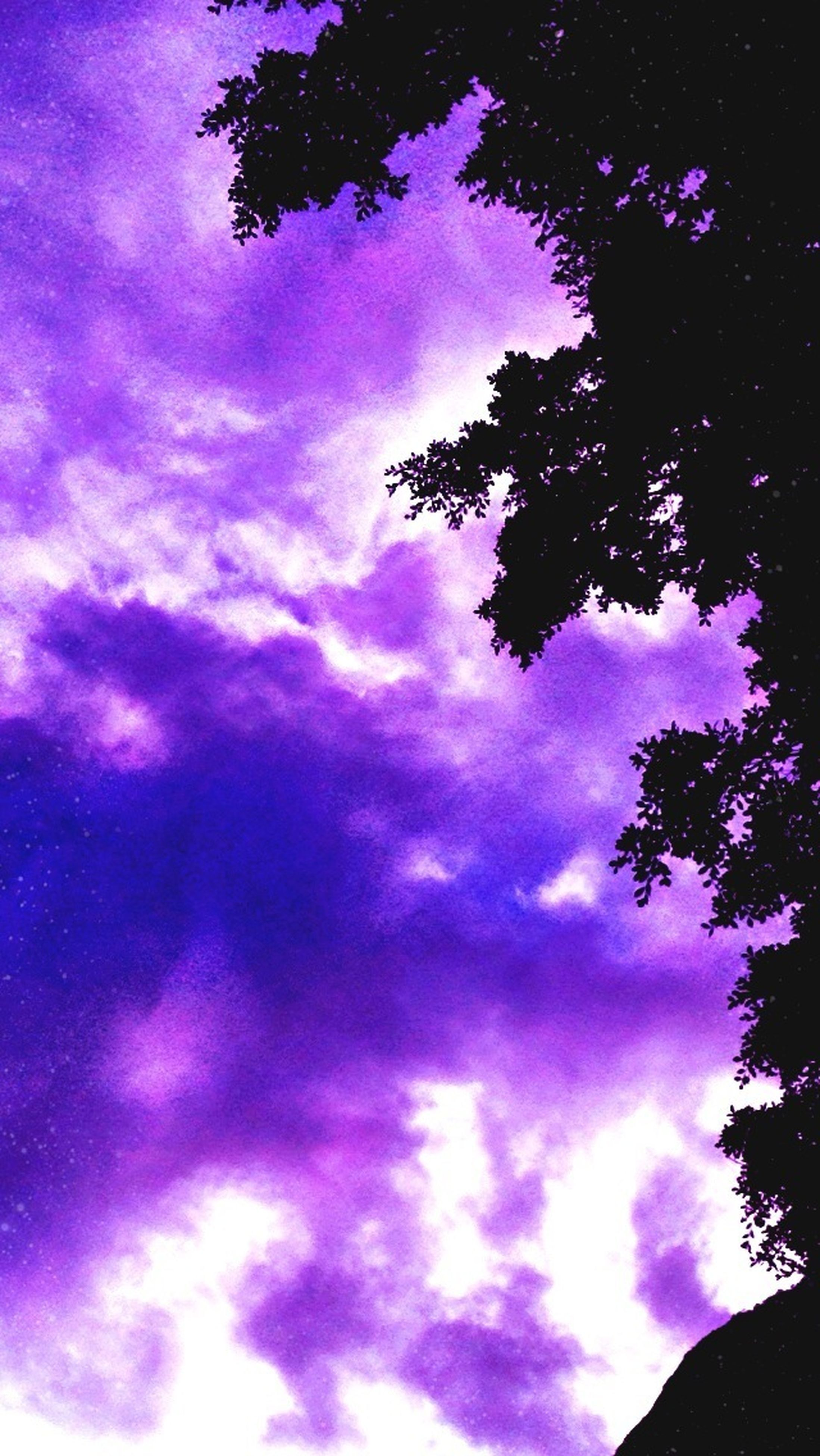 sky, low angle view, cloud - sky, tree, beauty in nature, tranquility, nature, silhouette, blue, cloudy, scenics, tranquil scene, cloud, growth, idyllic, outdoors, purple, dramatic sky, no people, dusk