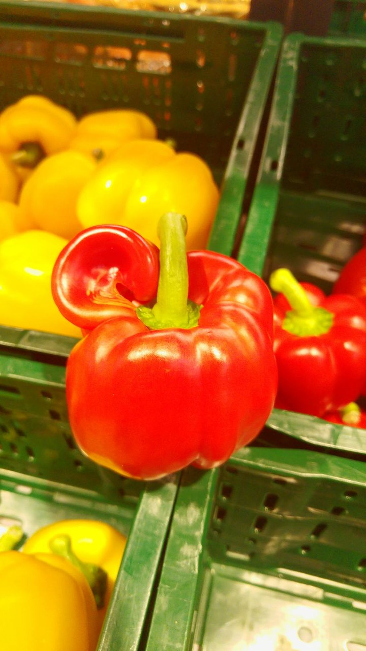 Red Supermarket Sweet Pepper With Ear 😂😀 Rostock