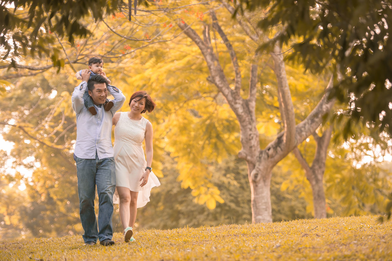Chinese Family ASIA Asian  Asian Family Autumn Chinese Lifestyles Nature Outdoors Park - Man Made Space Togetherness Tree