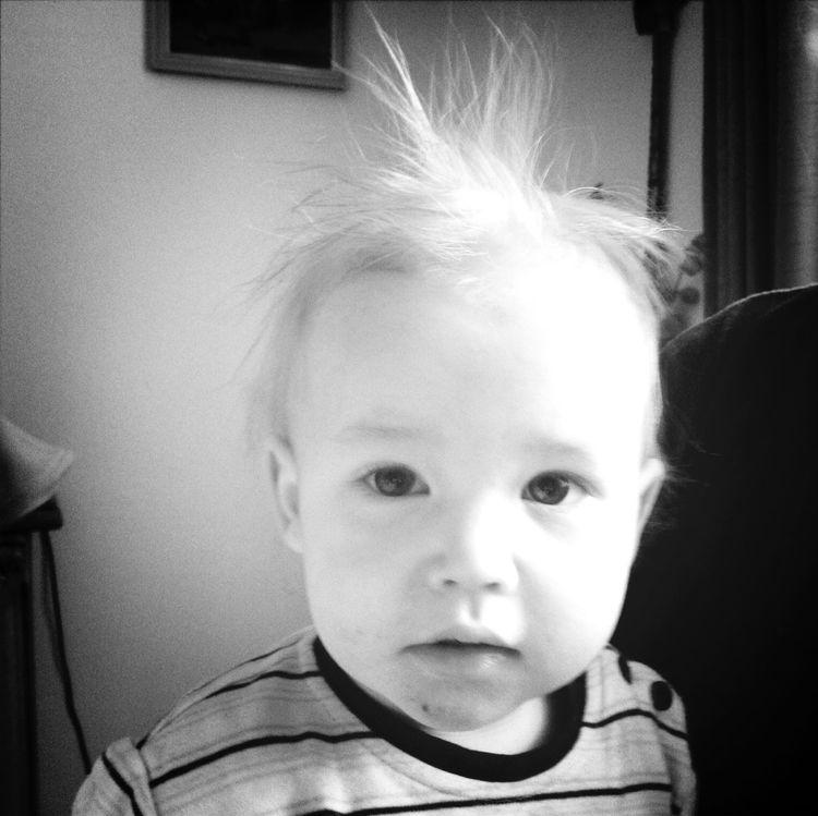 Arian Electrified Hairs Sweet Child Tennenbronn