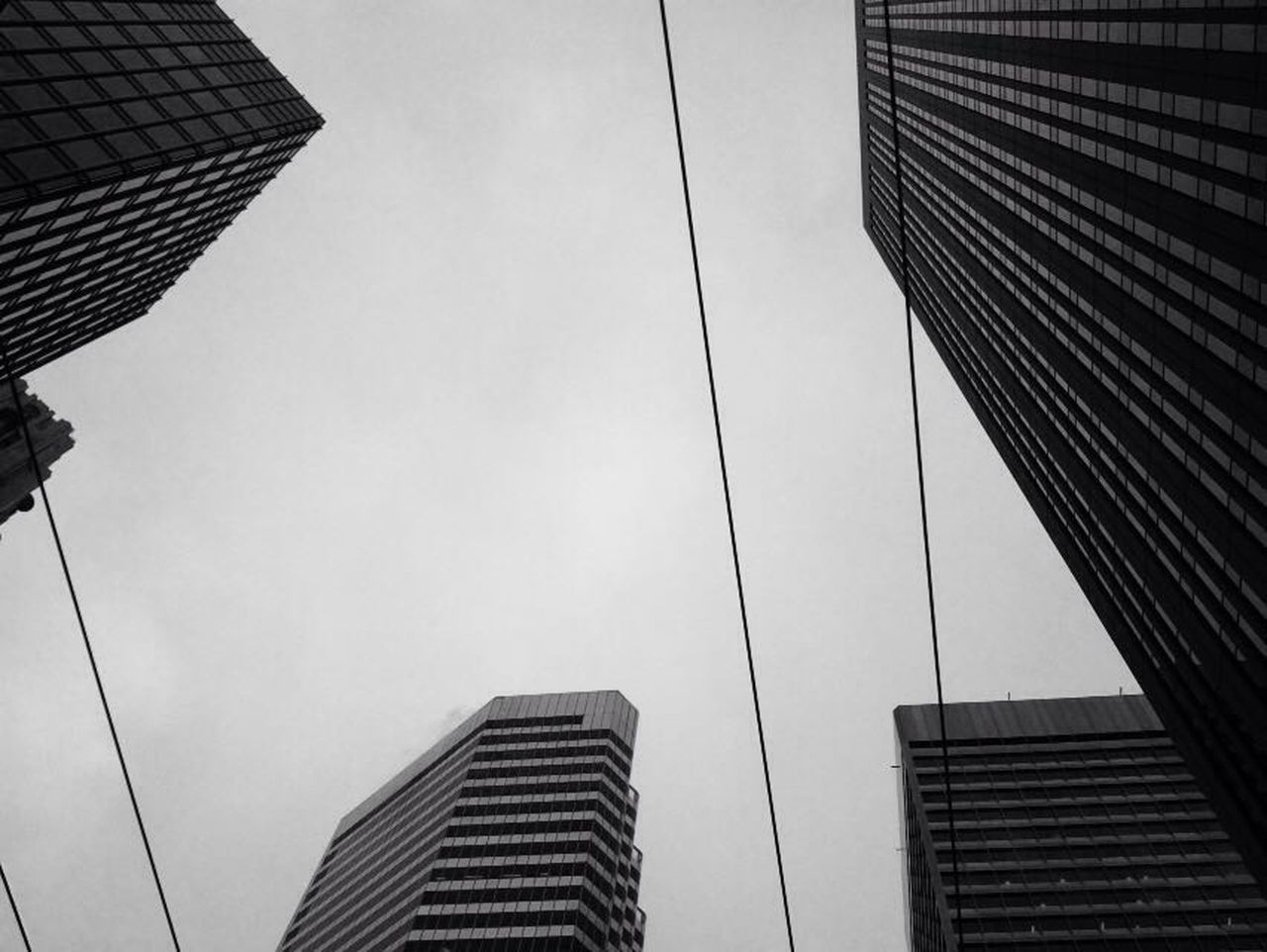 Architecture Skyscraper Built Structure Low Angle View Modern City Outdoors Urban Skyline Capturing The Moment Travel Destinations Architecture The Street Photographer - 2017 EyeEm Awards Photooftheday Blackandwhite Like Like4like Picoftheday Photography Photographer San Francisco Cali Califorina SanFranciscoBay California Love City The Architect - 2017 EyeEm Awards