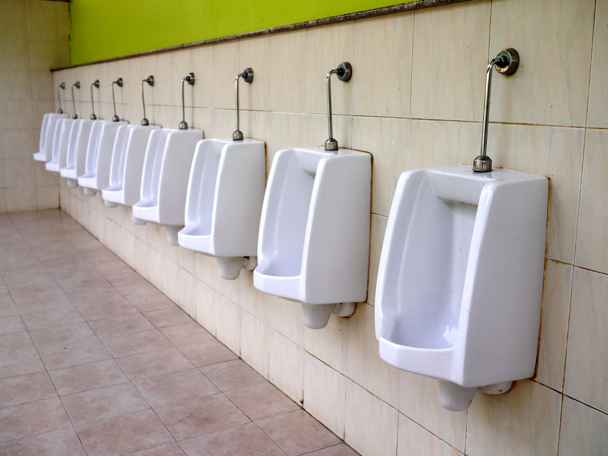 Urinal Bathroom Convenience Day Hygiene In A Row Indoors No People Public  Building Public Restroom Seat