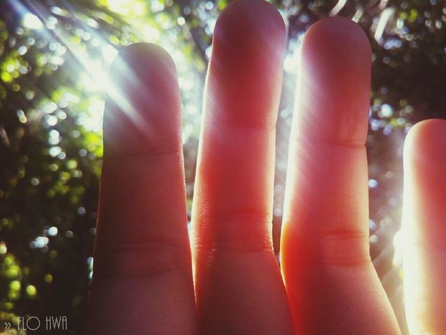 Finger.. Taking Photos Enjoying Life Sky And Clouds Sunshine Lomography Taking Photos Fatherhood Moments ANAGLYPHE First Eyeem Photo Green Color Photography Nature Photography Film Is Not Dead Filmisnotdead Flowers,Plants & Garden Instagood Enjoying Life Beautiful Nature Hello World Praising The Lord Sunday Mass Check This Out That's Me