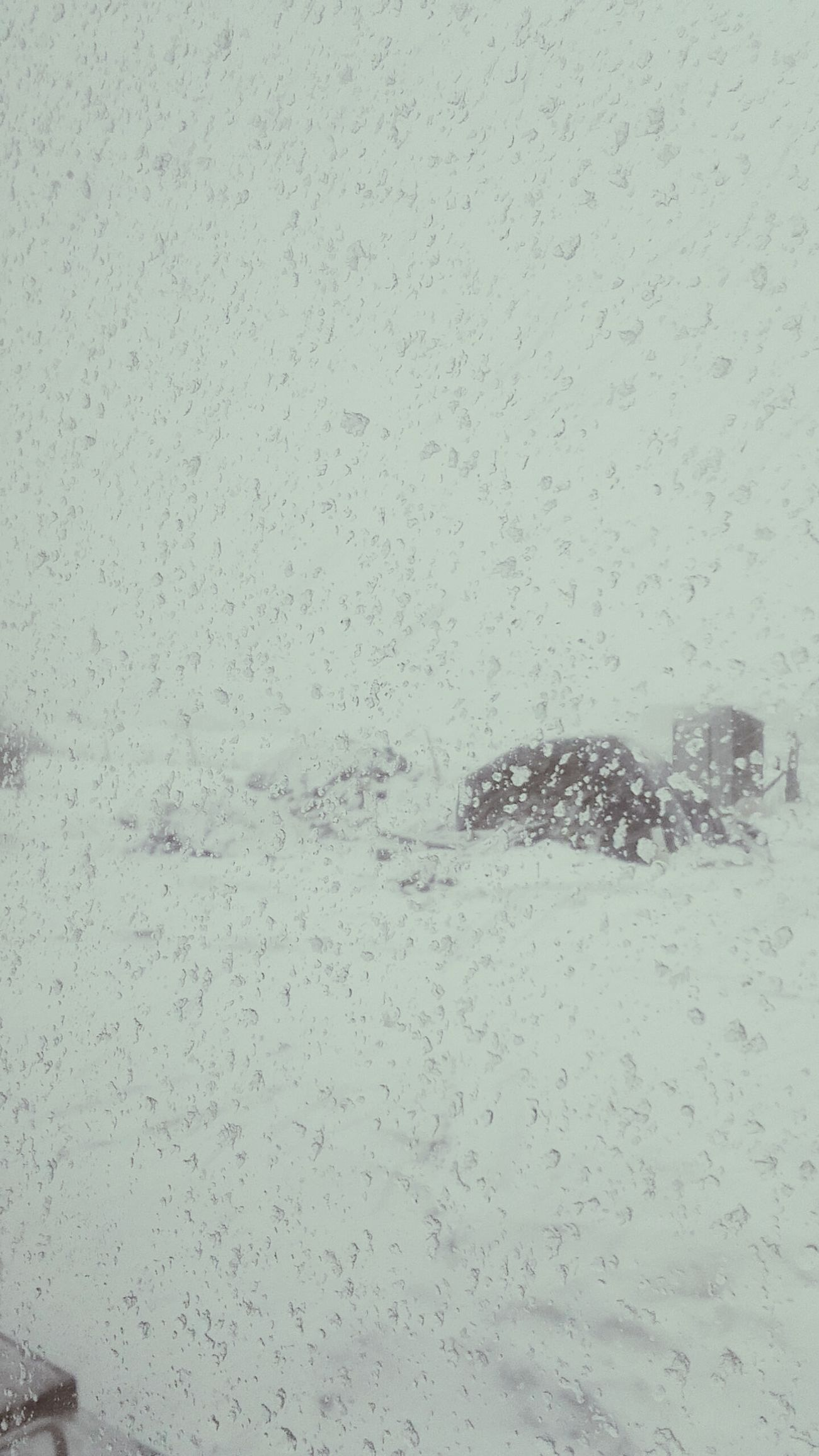 Thunder Snow. It's snowing and very windy......plus lightning and thunder Check This Out First Eyeem Photo