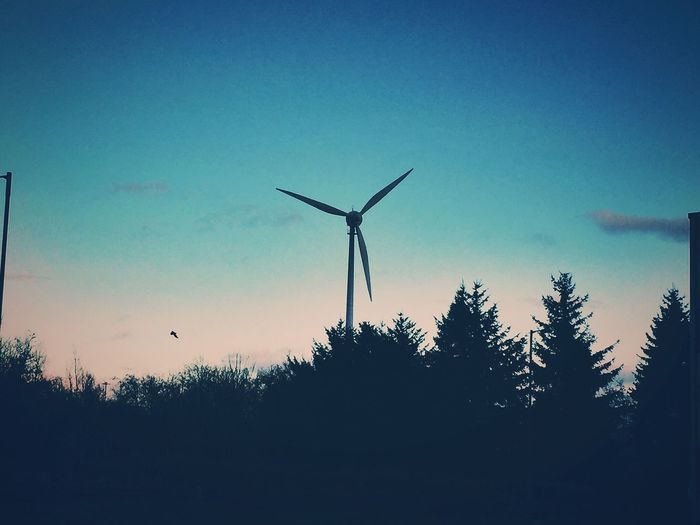 Wind Turbine Sunset Contrast Silhouette Trees Scotland Pastel Power Nature