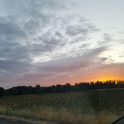 Oregon First Eyeem Photo