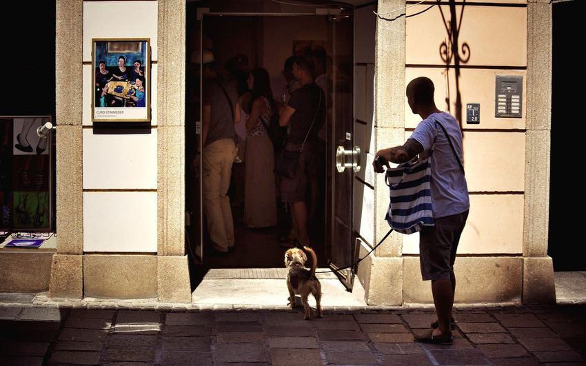 Summer Dogs Looking For Art Streetphotography Summer In The City From My Point Of View Beauty In Ordinary Things