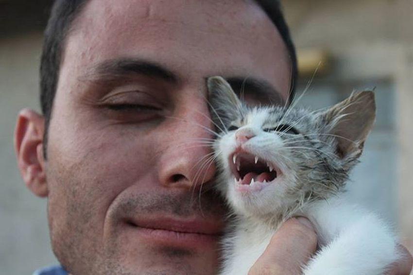 Kedi Hayvansever Hayvansevgisi Cat Animals Animallove Animallover VSCO Vscocam Vscoturkey Vscogood Fotografheryerde Fotografia Instaturkey Instagood Photooftheday Ankara