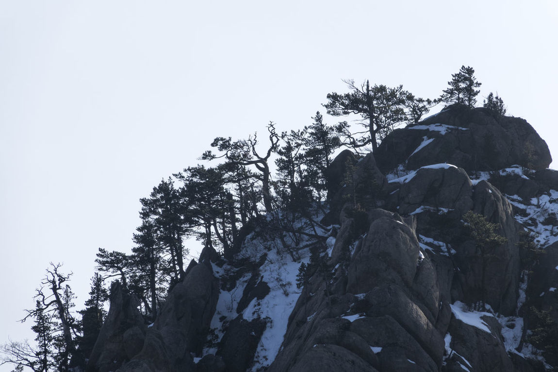 Winter in Mountain Seorak, South Korea Beauty In Nature Cold Day Low Angle View Mountain Nature No People Outdoors Pinaceae Rock Rocky Seoraksan Seoraksan National Park Sky Snow Tranquility Tranquility Tree Winter Winter