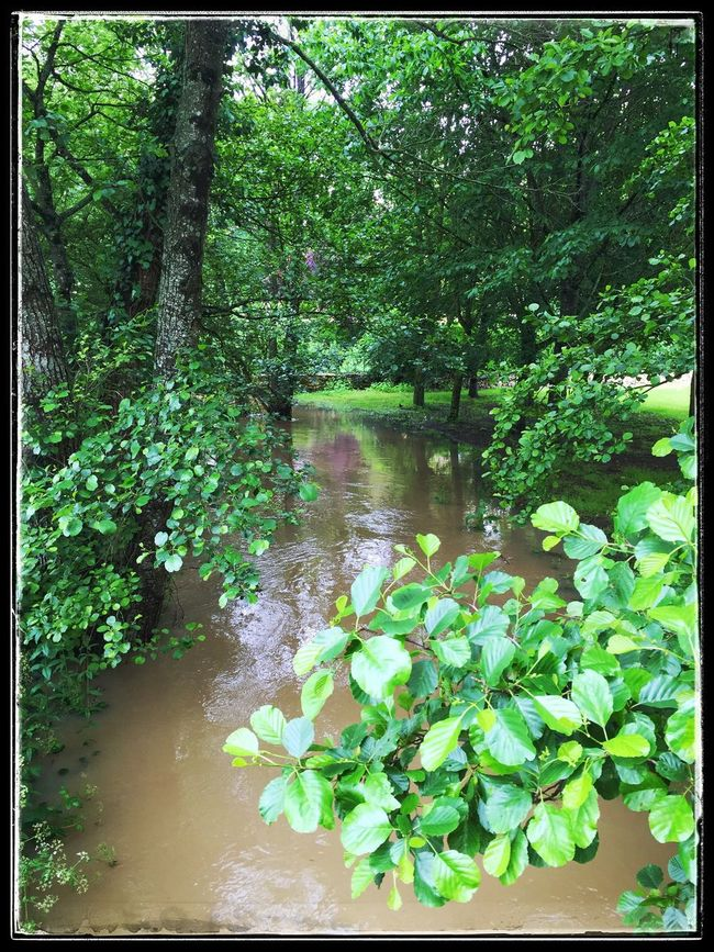 Se mettre au vert ... Green Green Color Water_collection Landscape_Collection