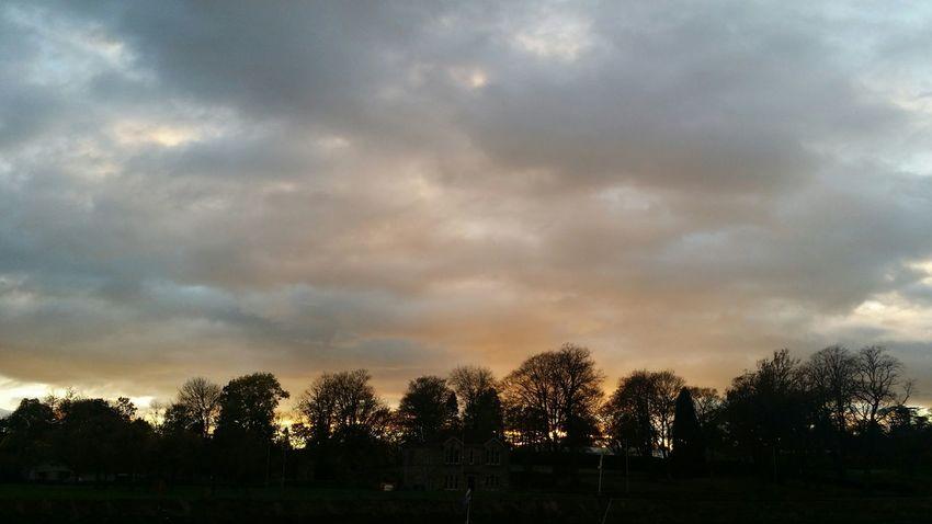 Levengrove Park Sunset Sunrise_sunsets_aroundworld Trees Scotland