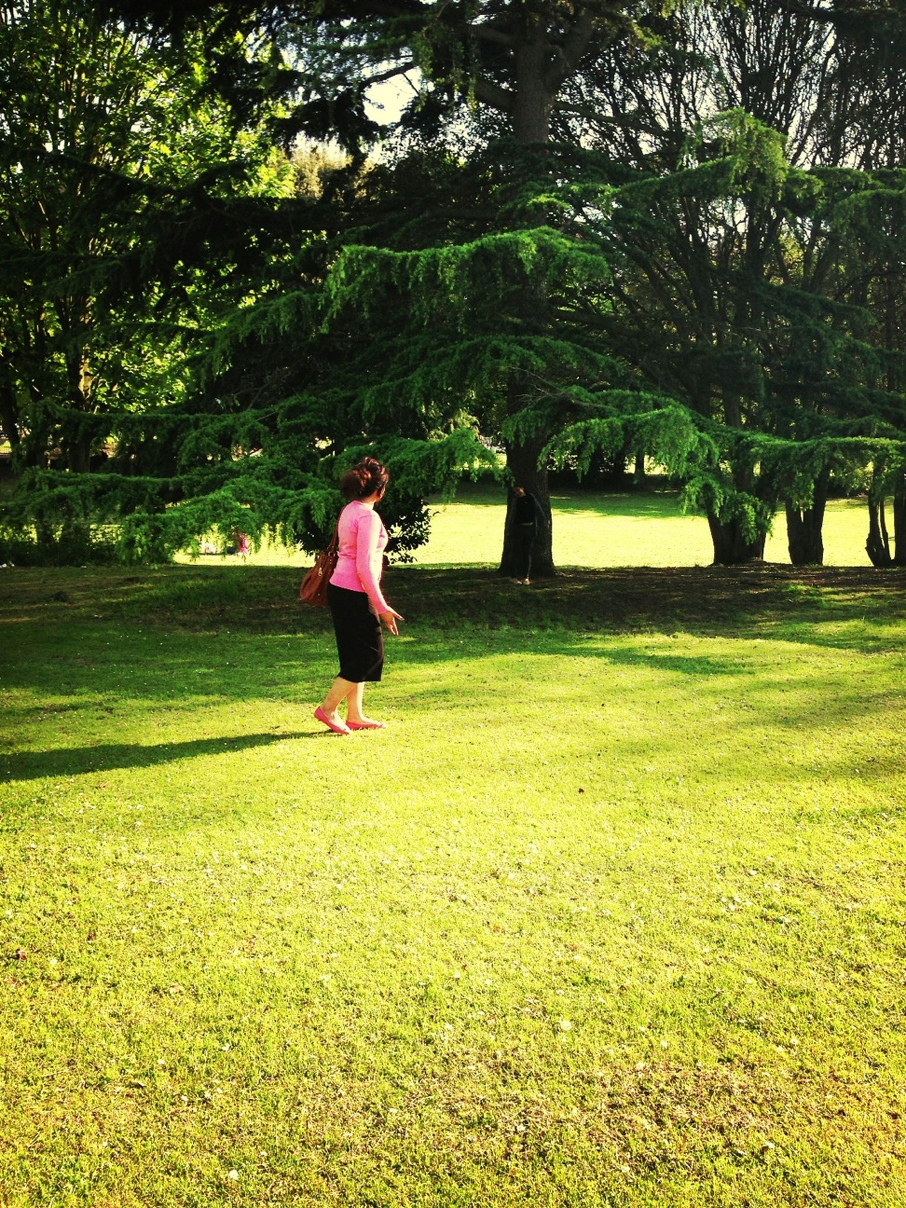 grass, tree, full length, lifestyles, leisure activity, park - man made space, rear view, casual clothing, childhood, green color, walking, grassy, park, girls, standing, field, growth, nature