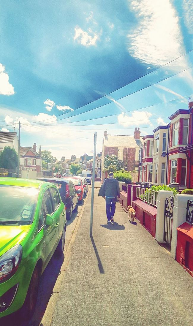 Showcase June Streetphotography Dogwalker Sunny Day Parked Cars Residential District Houses Man Dog Happiness One Person Dog Walker Outdoors