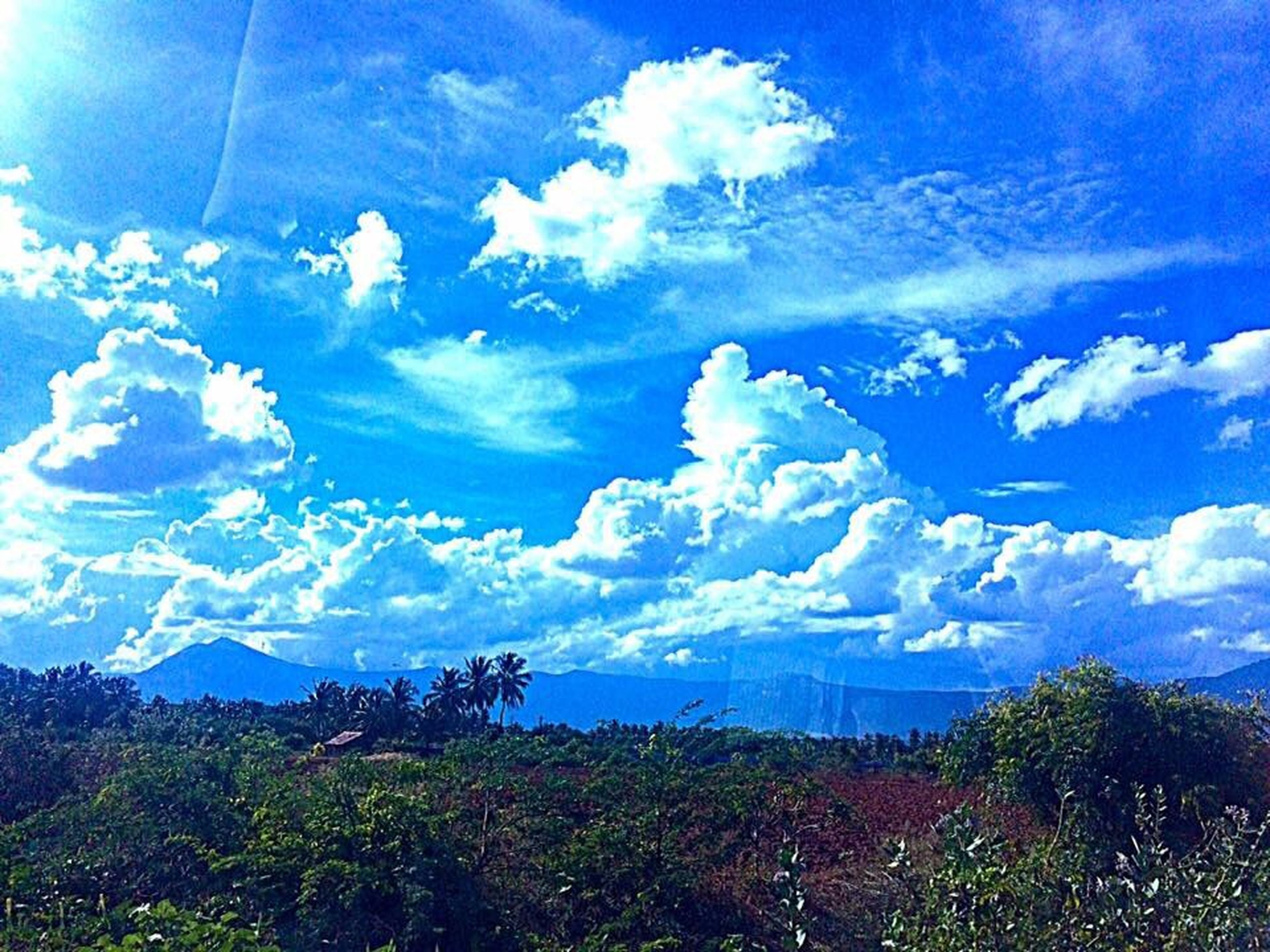 blue, sky, cloud - sky, nature, outdoors, low angle view, no people, beauty in nature, scenics, tranquility, tranquil scene, tree, day, landscape