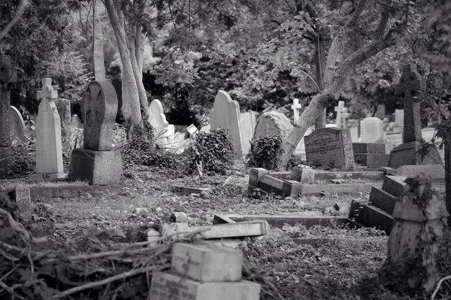 Eye4photography  Bw_collection Blancoynegro Graveyard Beauty Monochrome Noir Et Blanc Photography Graveyard Cemetery Black & White Black&white Blackandwhite