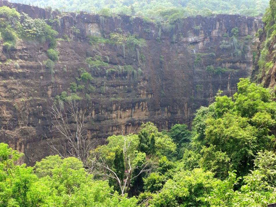 The Great Outdoors With Adobe Nature_perfection Nature Photography Nature_collection Naturelovers Treelovers Ajantacaves