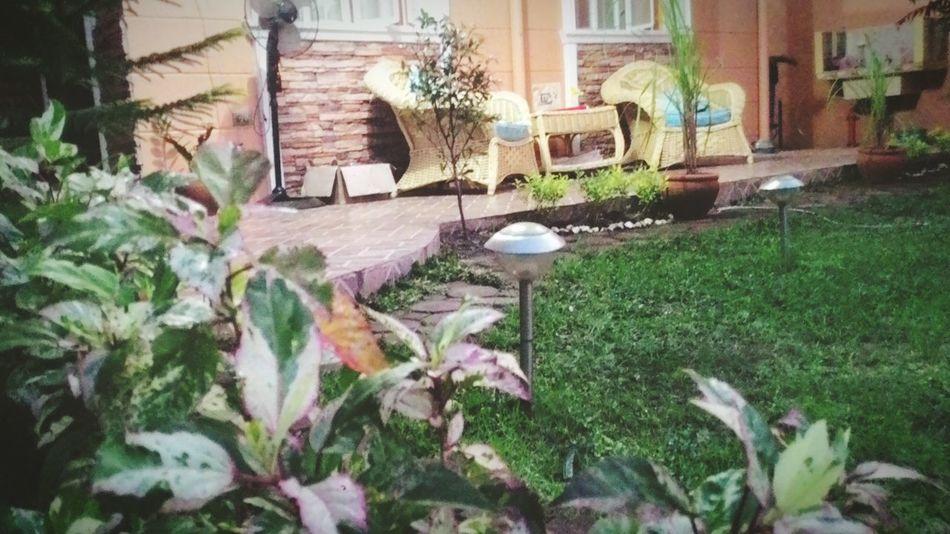 Randomly Taking Photos || Garden || Malolos || Landscape