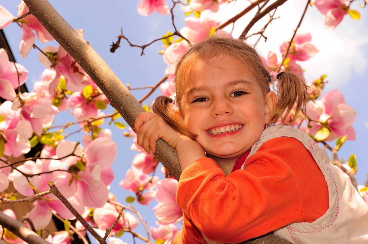 Beautiful stock photos of magnolie, 10-11 Years, Beauty In Nature, Branch, Caucasian Ethnicity