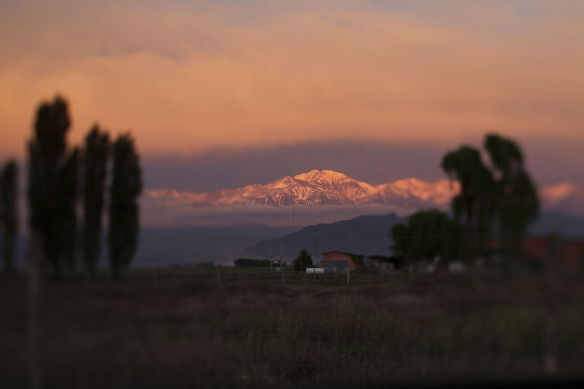 Sunrise in Mendoza Andes Mountains Copy Space Landscape_Collection Mendoza Nature Snow Capped Mountains Sunset_collection And Argentina Beauty In Nature Beauty In Nature Field Landscape Mountain Mountain Range Nature Open Outdoors Patagonia Scenics Sky Sunrise Sunset Tranquility Vineyard