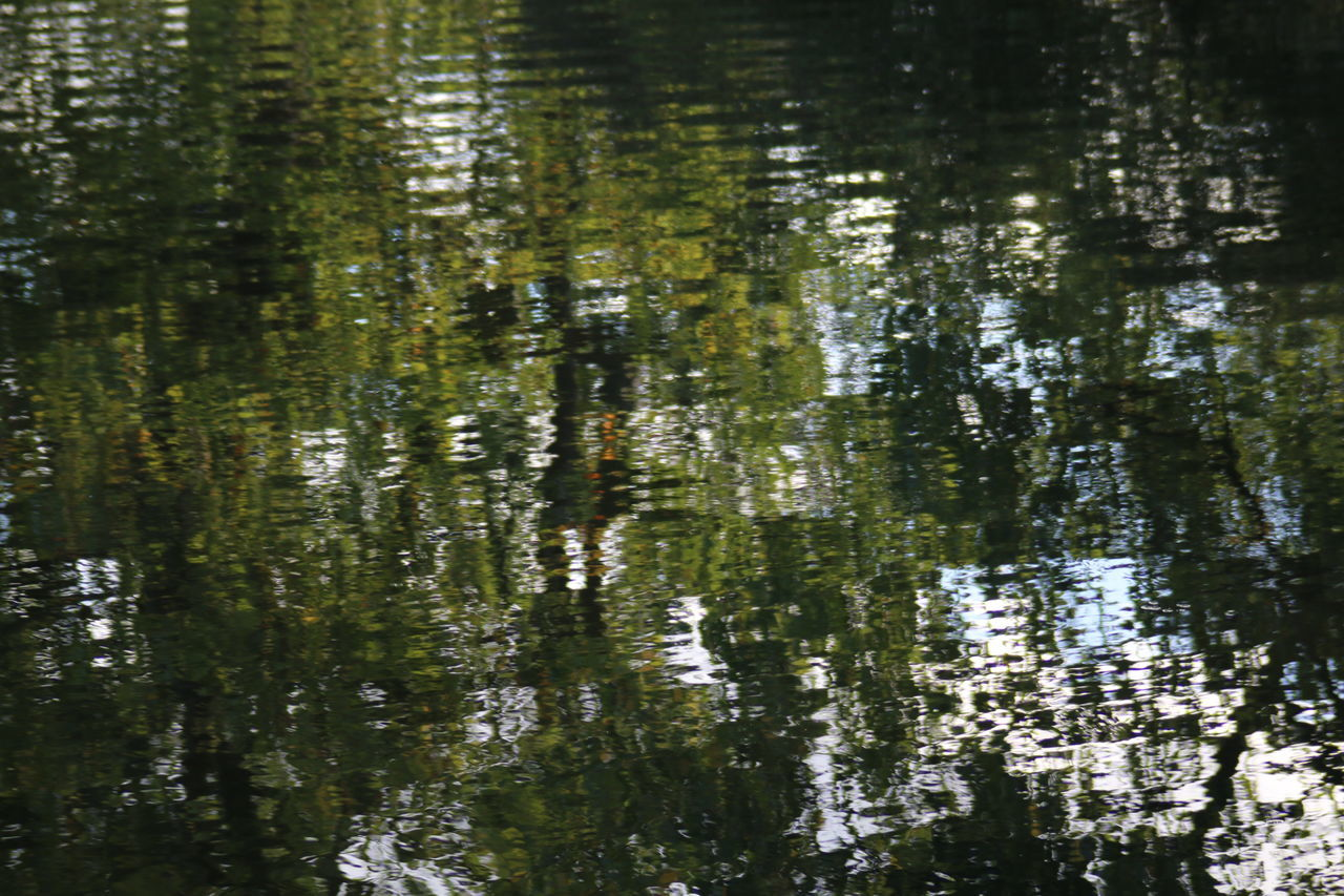 Water Reflection Lake Nature Green Color Tranquility Light And Reflection Beauty In Nature Water Surface Pond Water Reflections Natural Pattern Beauty In Nature Autumn Colours Autumn Is Coming Autumn Non-urban Scene Reflections And Shadows Reflections In The Water Reflection_collection Reflections Miror Reflect Miroring Hampstead Heath EyeEm Best Shots - Nature