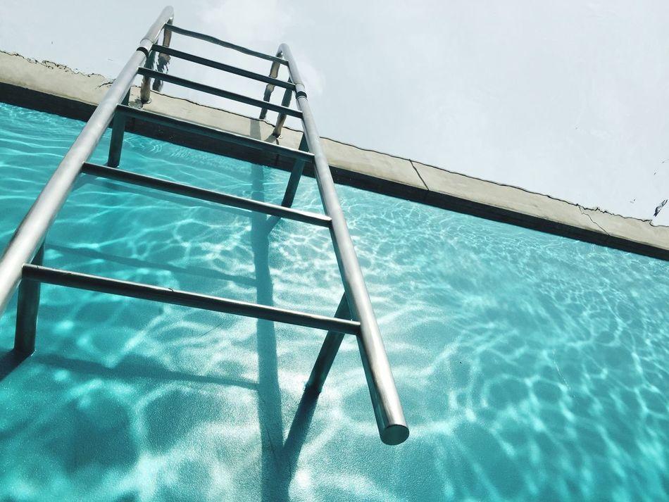 21stcenturymuseum Kanazawa Swimming Pool